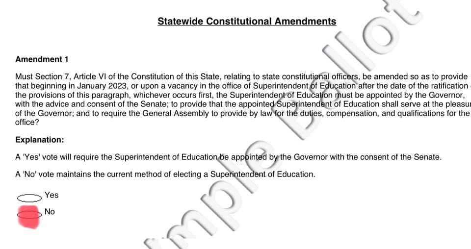 sc ballot amendment